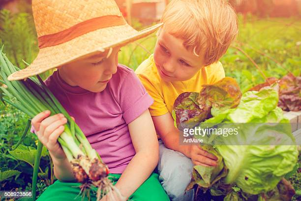 Children at farm