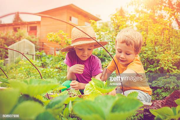 Kinder im Bauernhof