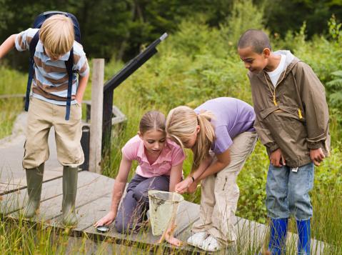 Children at nature reserve 79337242