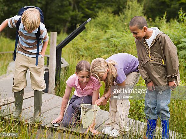 children at nature reserve - sumpmark bildbanksfoton och bilder