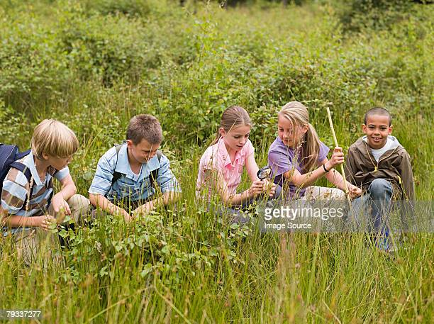 children at nature reserve - nature reserve stock pictures, royalty-free photos & images