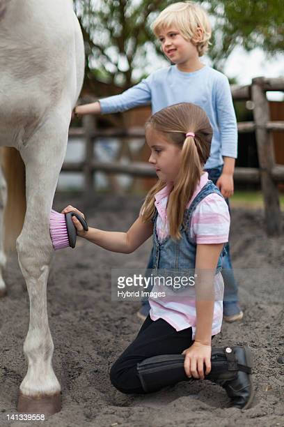 Children Brushing Horse S Coat