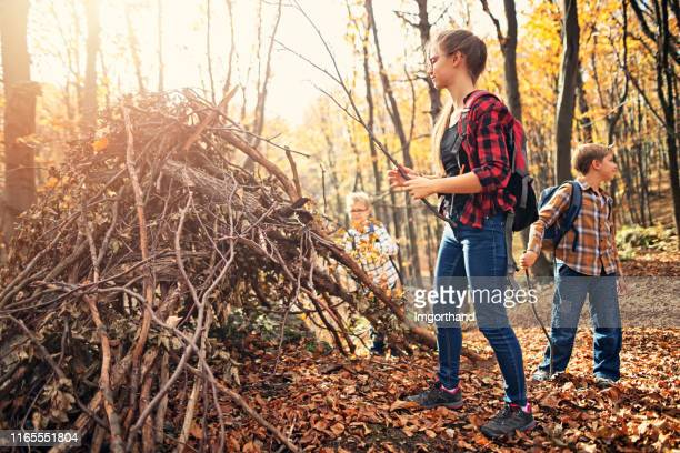 children building stick shelter in autumn forest - children only stock pictures, royalty-free photos & images