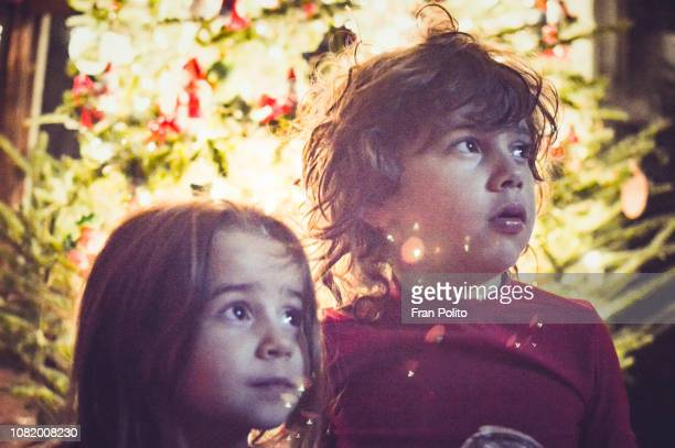 children by the christmas tree. - baldwin brothers stock pictures, royalty-free photos & images
