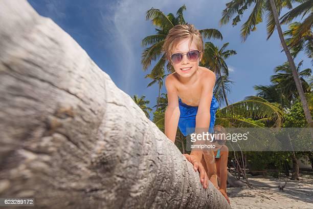 children climbing on palm tree