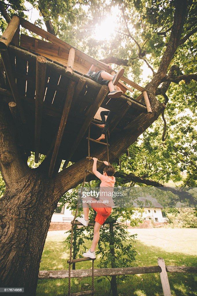 Swing Set Rope Ladder 24 Tree House