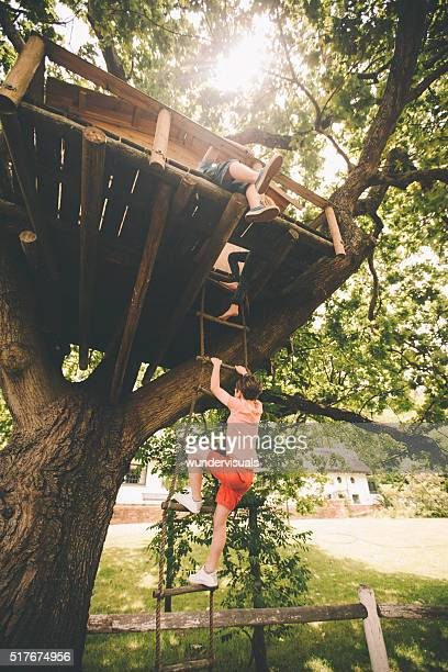 Children climbing up a rope ladder to their treehouse