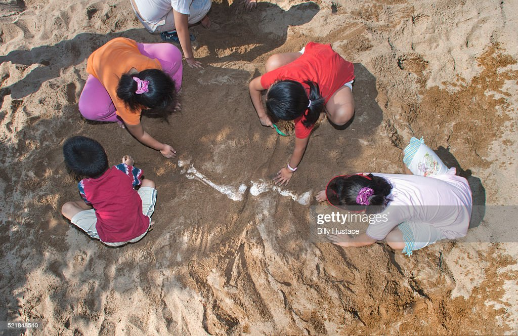 Children Dig In Sand Searching For Dinosaur Bones Stock