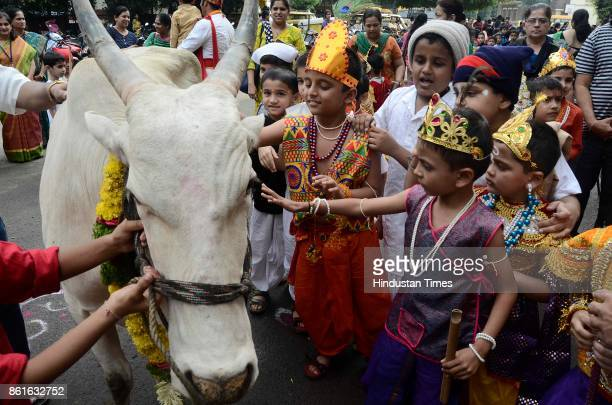 Children dressed as Lord Krishna worship cow and calf during Vasubaras celebration at DES School Tilak road on October 14 2017 in Pune India...