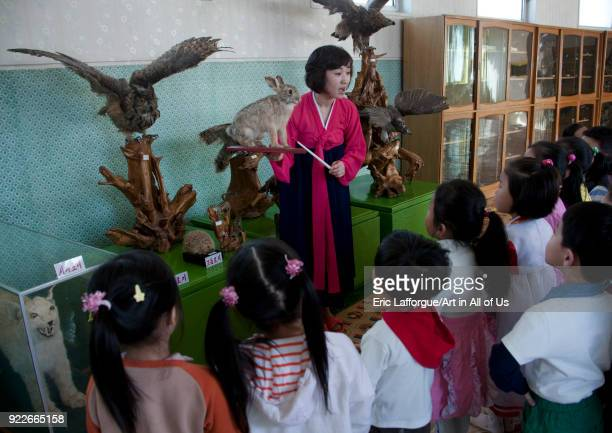 Children during a lesson with stuffed birds at Kwangbok primary school Pyongan Province Pyongyang North Korea on April 29 2010 in Pyongyang North...
