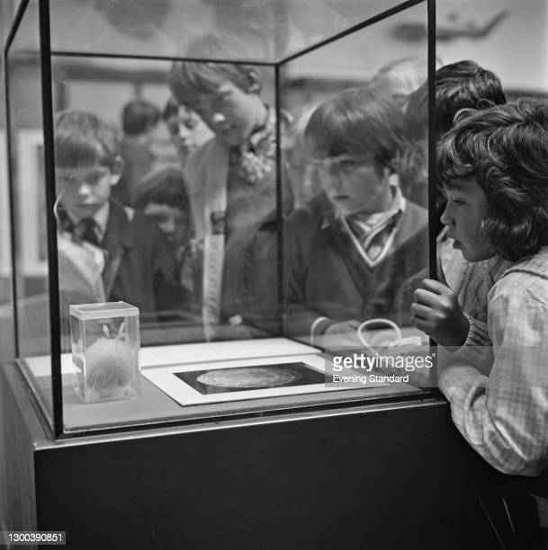 Children examining the egg of a coelacanth, a rare order of fish, UK, 11th July 1972.