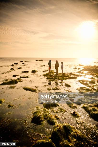 Children explore tide pools with net and hats