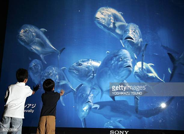 Children extend their hands to touch the image fish projected from a Sony's 4096 x 2160pixels ultrahigh resolution digital movie projector 4K SRX...