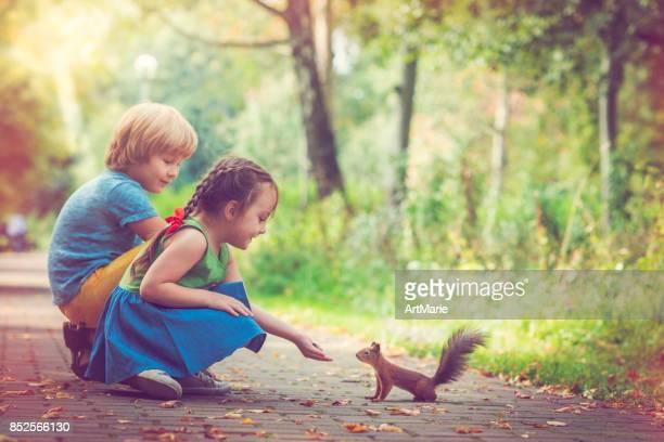 Kinderen voeden eekhoorn
