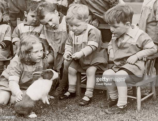 Children from Swansea Open Air Nursery School with their pet rabbit Bubbles 26th April 1939