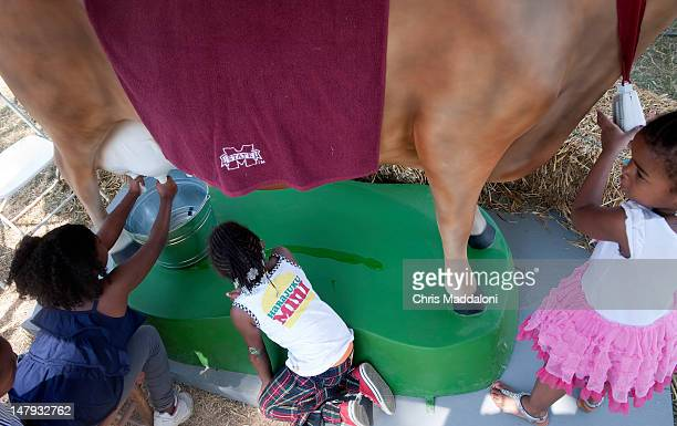 Children from Washington DC's Perry Center summer camp learn how to milk a mechanical cow at the Mississippi State University booth at the annual...