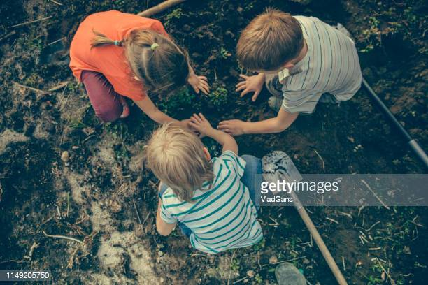 children gardening - digging stock pictures, royalty-free photos & images