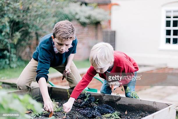 Filhos de Jardinagem