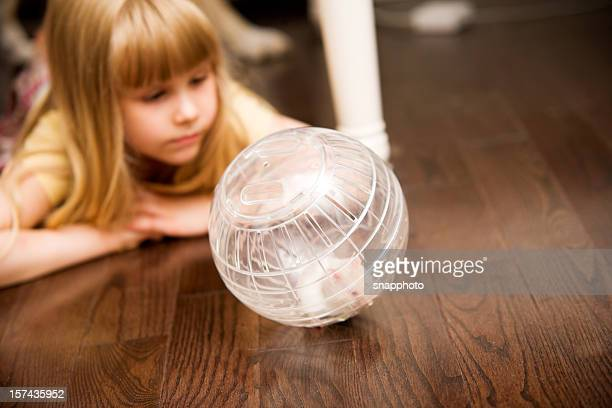 Children  Girl Playing and Happy with Hamster Pet in Ball