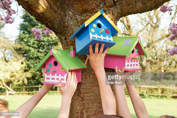 children hanging birdhouses in tree - birdhouse stock pictures, royalty-free photos & images