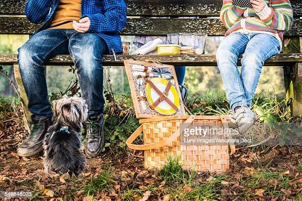 children having a picnic, dog is watching - dog eats out girl stock pictures, royalty-free photos & images
