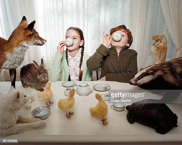 children having a tea party with animals - social grace stock pictures, royalty-free photos & images