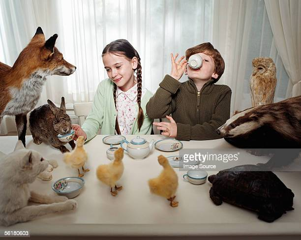 children having a tea party with animals - duck bird stock pictures, royalty-free photos & images