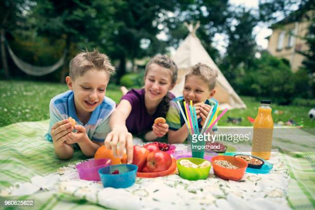 children having fun at picnic in garden - picnic stock pictures, royalty-free photos & images