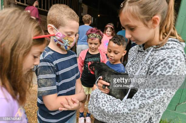 Children hold and pet a hen outside the barn. Every summer children that have suffered trauma or loss are accepted to Farm Grief Camp. The children...
