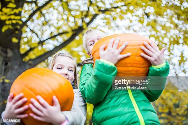 children holding pumpkin - harvest festival stock pictures, royalty-free photos & images