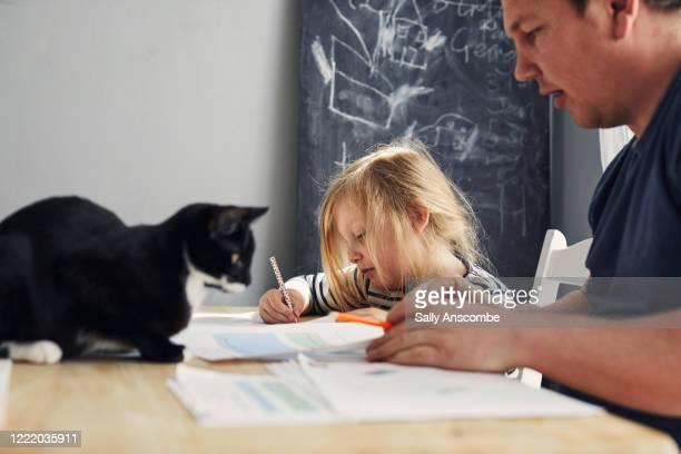 children homeschooling - daughter stock pictures, royalty-free photos & images