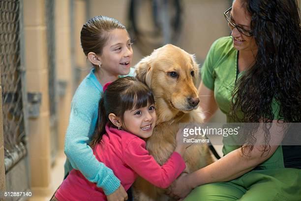 Niños, que abrazan un rescató un los animales