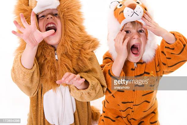 children in a lion and tiger costume - animal costume stock pictures, royalty-free photos & images