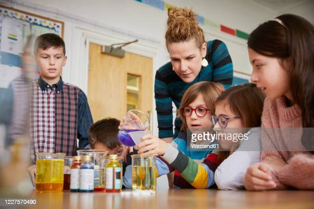 children in a science lesson with a teacher - examining stock pictures, royalty-free photos & images
