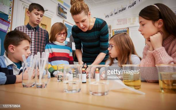 children in a science lesson with a teacher - teacher stock pictures, royalty-free photos & images