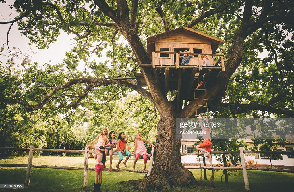 Picture of: 14 746 Tree House Photos And Premium High Res Pictures Getty Images