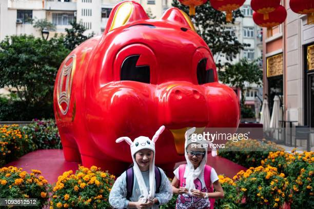 TOPSHOT Children in animal hats pose in front of a pig giant pig installation ahead of the Lunar New Year in Hong Kong on Feburary 4 2019