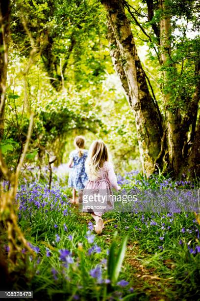 Children in bluebell woods