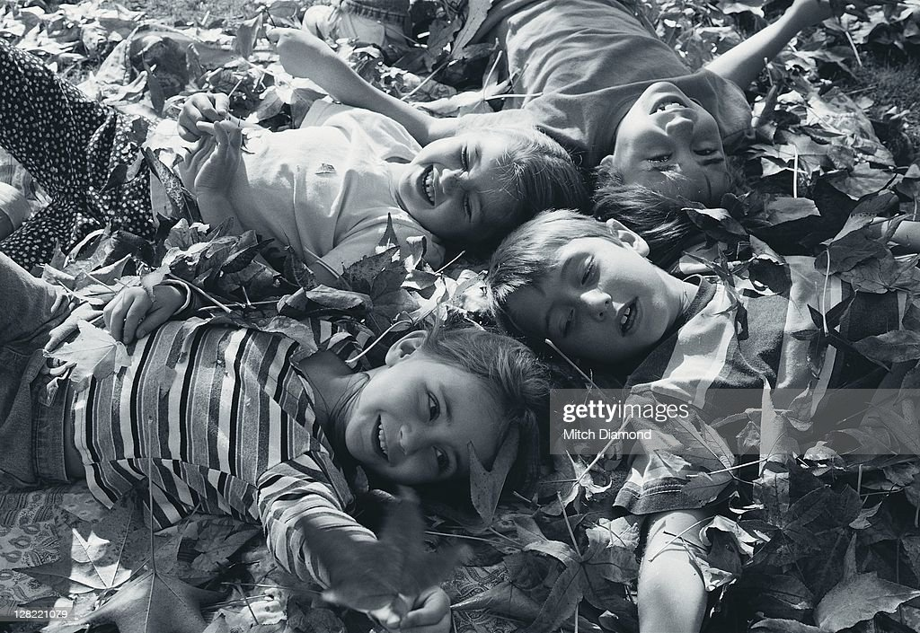 Children in leaves : Stock Photo