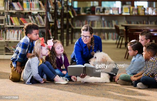children in library with reading assistance dog - disability stock pictures, royalty-free photos & images