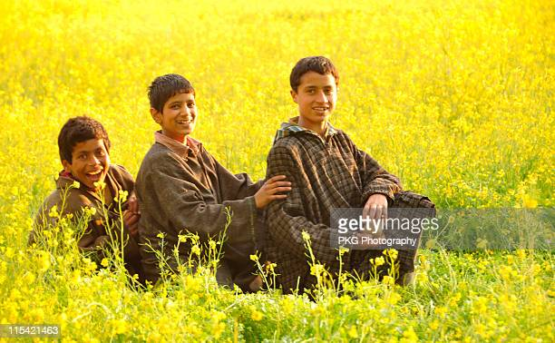 children in mustard field - kashmir stock photos and pictures
