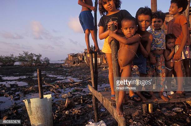 Children in poverty lack of wastewater treatment services and sanitation in Brazilian favela stilt houses Natal city Rio Grande do Norte State...