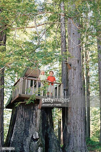 children in tree house - jessamyn harris stock pictures, royalty-free photos & images