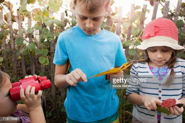 children investigating leaves, blowing rocks preserve, jupiter, florida, usa - blowing rocks preserve stock photos and pictures