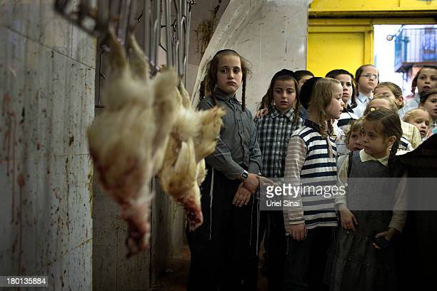Children look at a dead chickens entering a cleaning machine in a slaughterhouse as UltraOrthodox Jews perform the Kaparot ceremony on September 9...