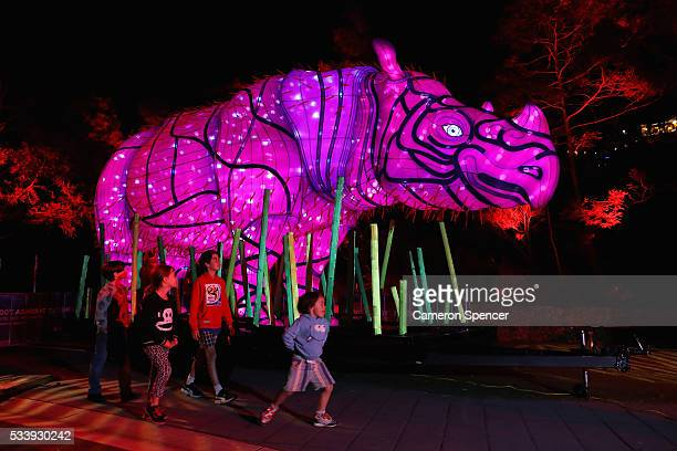 Children look at a Sumatran Rhino light sculpture during a media preview of Vivid Sydney illuminated displays at Taronga Zoo on May 24 2016 in Sydney...
