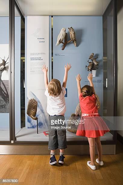 Children looking at a museum exhibit