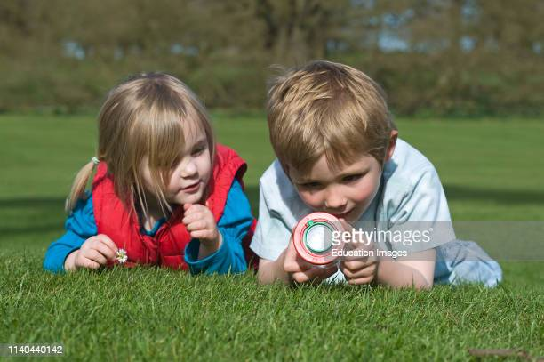 Children looking at ladybirds in bug collecting jar, Norfolk.