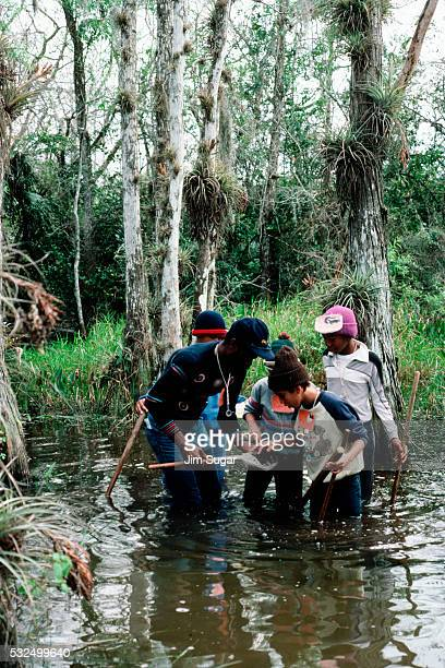 children looking at specimens - anhinga_trail ストックフォトと画像
