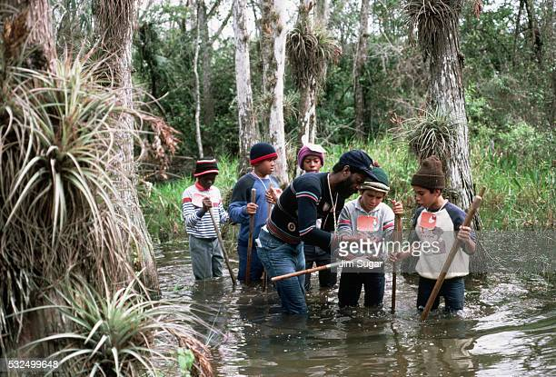 children looking at specimens - anhinga_trail stock pictures, royalty-free photos & images